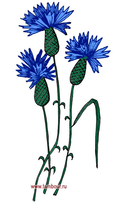 Цветы рисунки букет